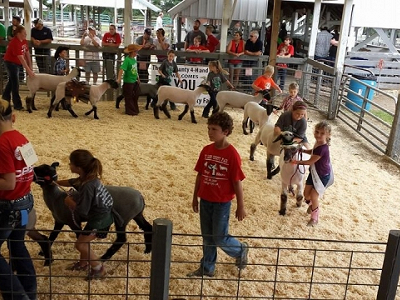 Guide to The Linn County Fair