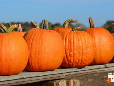 Guide to Cedar Rapids Area Apple Orchards and Pumpkin Patches 2016