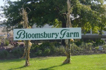 Artisan Fair Flea Market Hosted @ Bloomsbury Farm